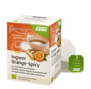 Salus Ingwer Orange Spicy Gourmet Tee, bio 15FB